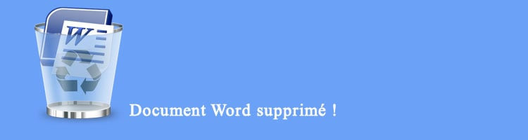 Renee Undeleter-Logiciel pour récupérer le document Word