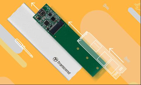 SSD M.2 - Renee Becca