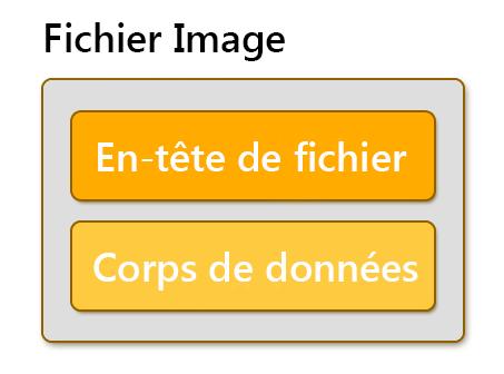 un fichier image est composé par l'en-tête et le corps de données
