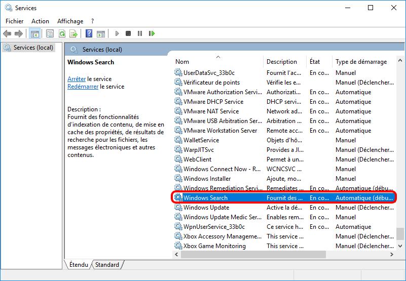 double cliquer sur Windows Search