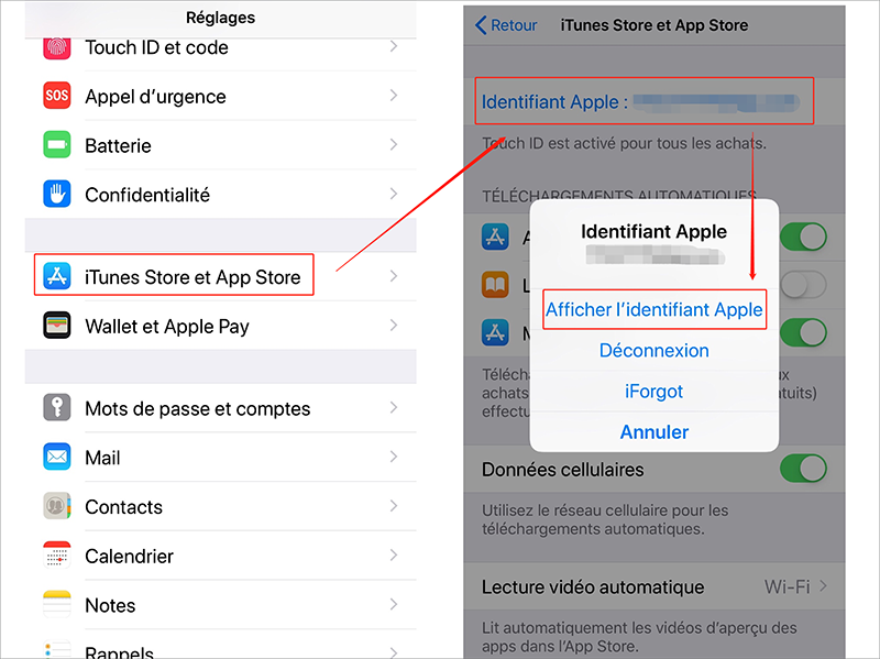 Afficher l'identifiant Apple