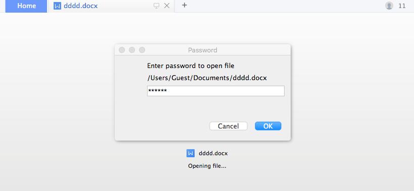 taper le mot de passe pour ouvrir le fichier chiffré
