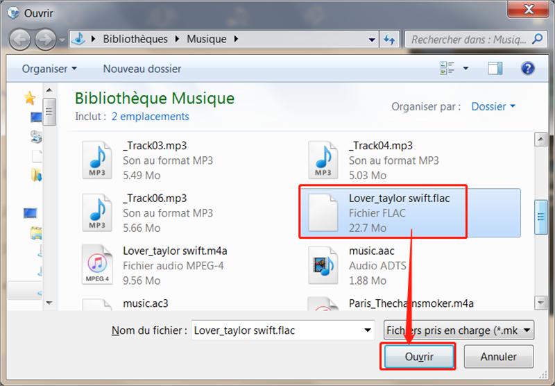 Sélectionnez le fichier cible et ajoutez-le à l'interface du logiciel